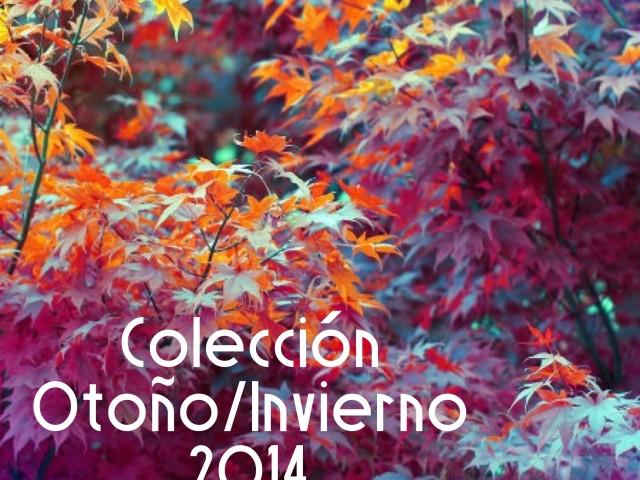 COLECCIÓN OTOÑO/INVIERNO 2013-2014