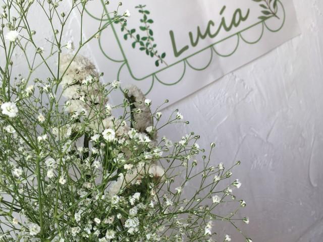 EL MERCADO DE LUCÍA: LA PAPELERÍA.